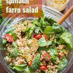 Farro Salad with Balsamic Vinaigrette