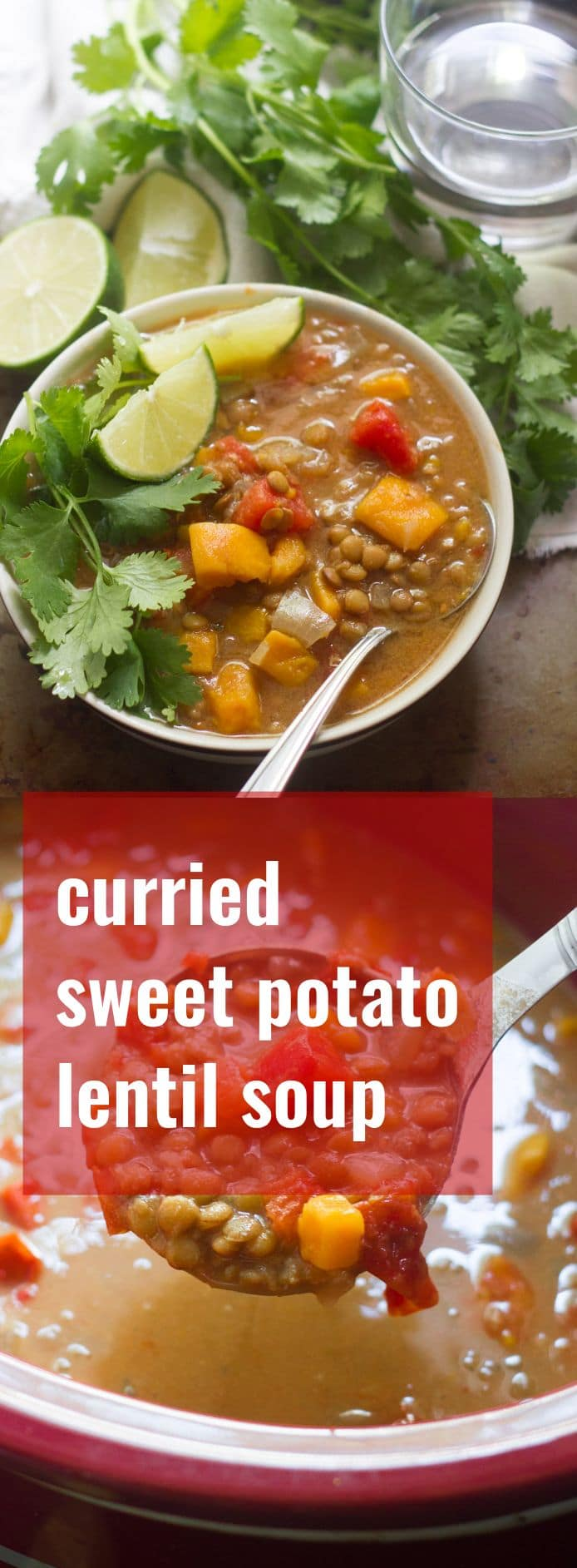 Curried Sweet Potato Lentil Soup