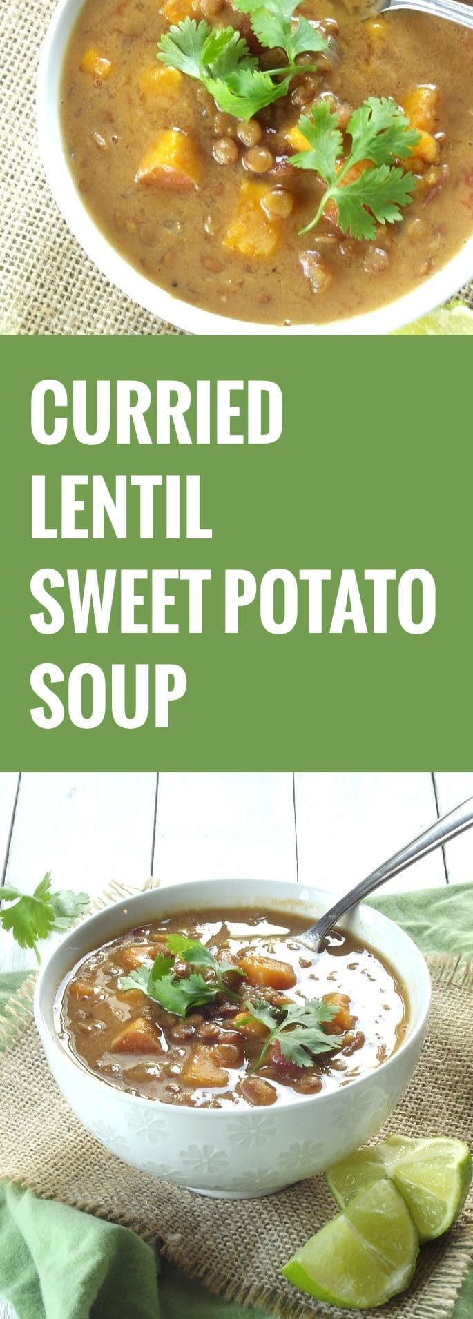 Curried Lentil Sweet Potato Soup - Connoisseurus Veg