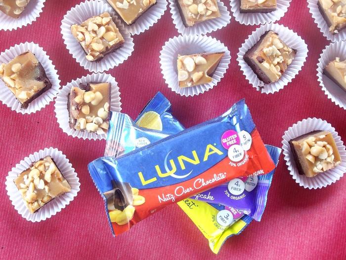 vegan chocolate peanut butter fudge top with luna