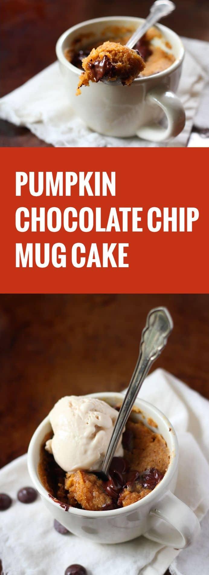 Chocolate Chip Pumpkin Mug Cake - Connoisseurus Veg