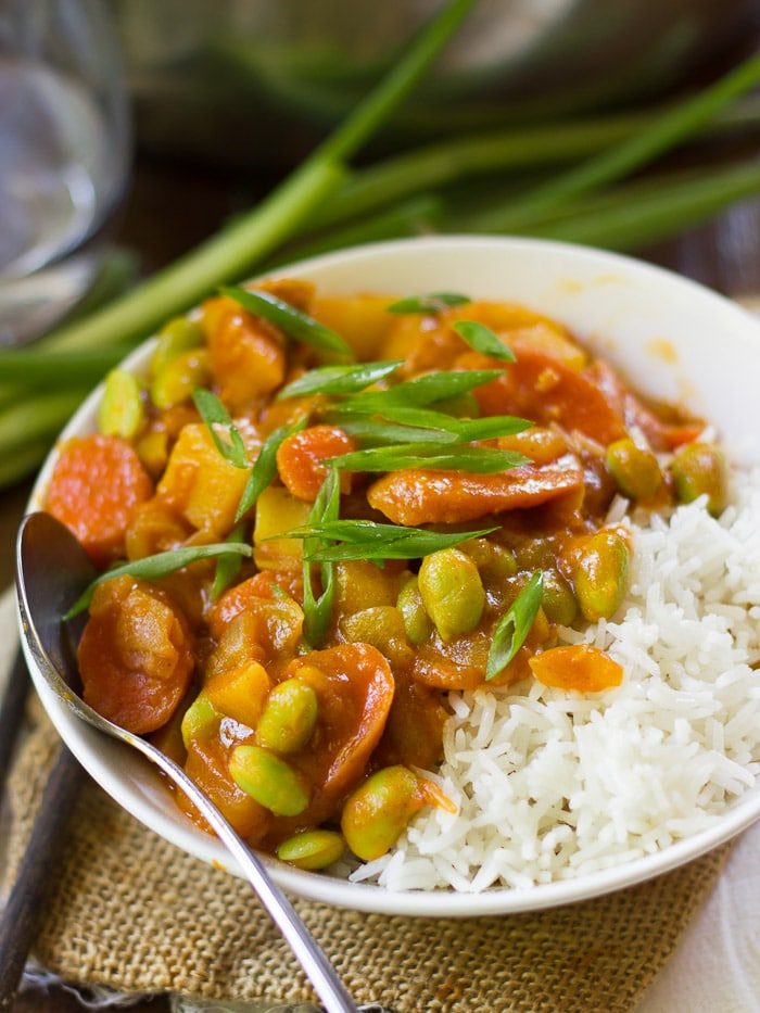 Bowl of Vegan Japanese Curry with Rice and Scallions on Top