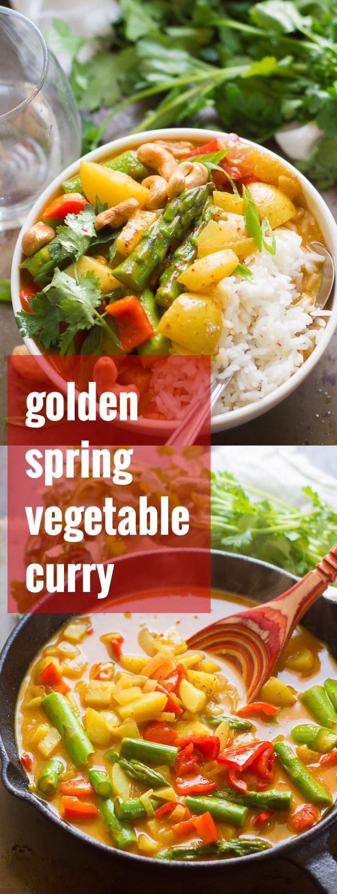 Golden Spring Vegetable Thai Curry
