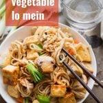 Vegan Vegetable Lo Mein with Tofu