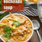 Cheesy Vegan Enchilada Soup