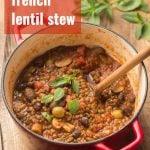 Vegan French Lentil Stew (Lentils Provencal)
