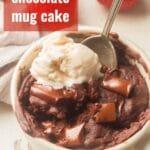 Vegan Chocolate Mug Cake